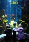 Anna og Mads i Atlantis