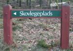 Skovlegeplads